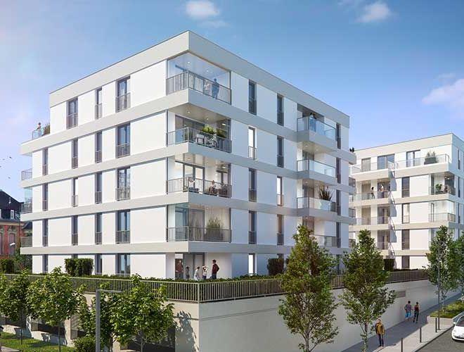 Baumanagement-Wiesbaden-1